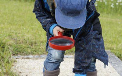 Geschützt: Projektarbeit á la Reggio: Kinder-Kunst-Haus Maintal